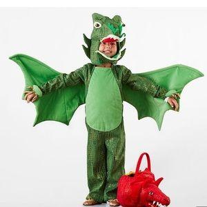 Potter Barn Dragon Costume